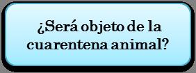 import1_es