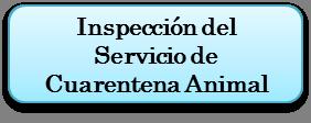 import4_es