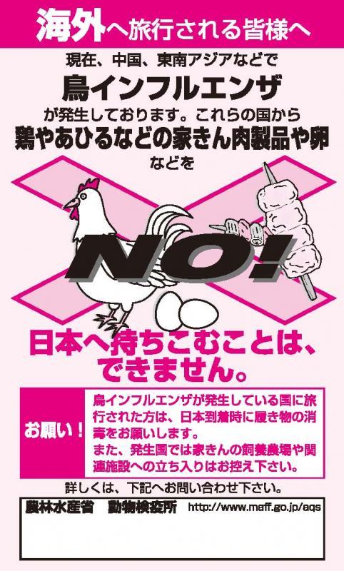 ai-leaflet.jpg