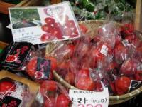 桃源_トマト