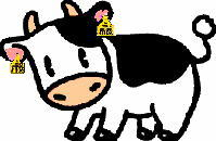 牛のイメージ