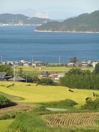 【写真】中国地方の農村風景(山口県柳井市)