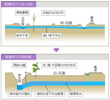 【図】水田の整備イメージ