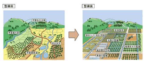 【図】畑の整備イメージ