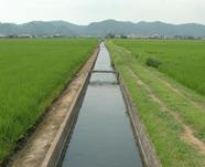 【写真】用水路(香川用水)
