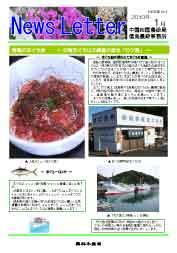 ニュースレター徳島版2010年1月