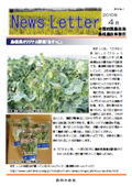 ニュースレター(島根版)2010年4月