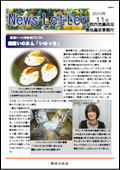 ニュースレター(島根版)2010年11月