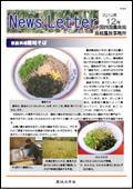 ニュースレター(島根版)2010年12月