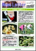 ニュースレター(徳島版)2010年12月