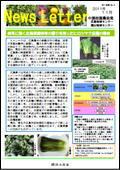 ニュースレター(広島版)2011年11月