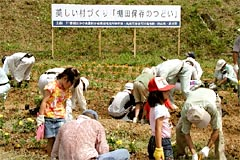 ボランティアによる棚田保全活動状況