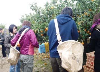 24大学生との意見交換会・収穫体験1