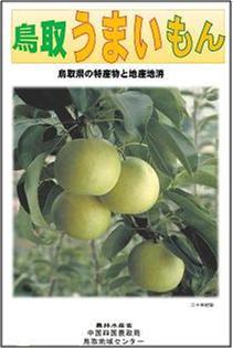 鳥取うまいもん(鳥取県の特産物と地産地消)パンフレット