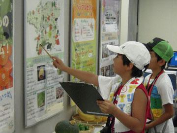 中国四国農政局「『夏季親子のための特別企画』~楽しく学ぼう!in農政局~」の開催-展示コーナーの様子