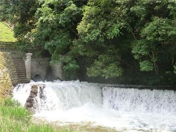 放水口からあふれる水
