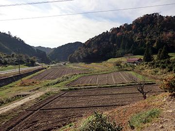 中山間地域の圃場の様子(島根県大田市三瓶町)