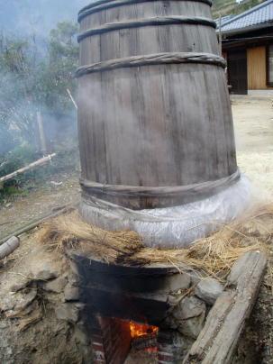 収穫したみつまたを桶で蒸して柔らかくする