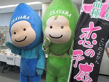 岡山市イメージキャラクターのミコロとハコロ