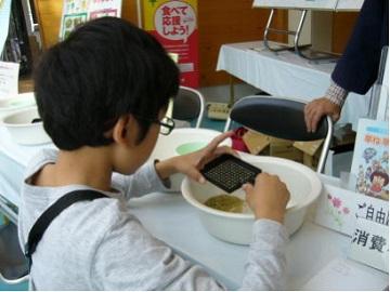 「お米の粒数」を穀粒計数板を使って体験