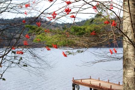 ナナカマドチミケップ湖