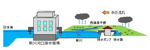 新川河口排水機場(概略図)