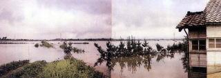 西蒲原平野の豪雨による被災状況