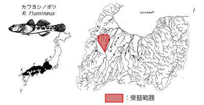 カワヨシノボリの分布