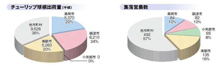 円グラフ(チューリップ球根出荷量&集落営農数)