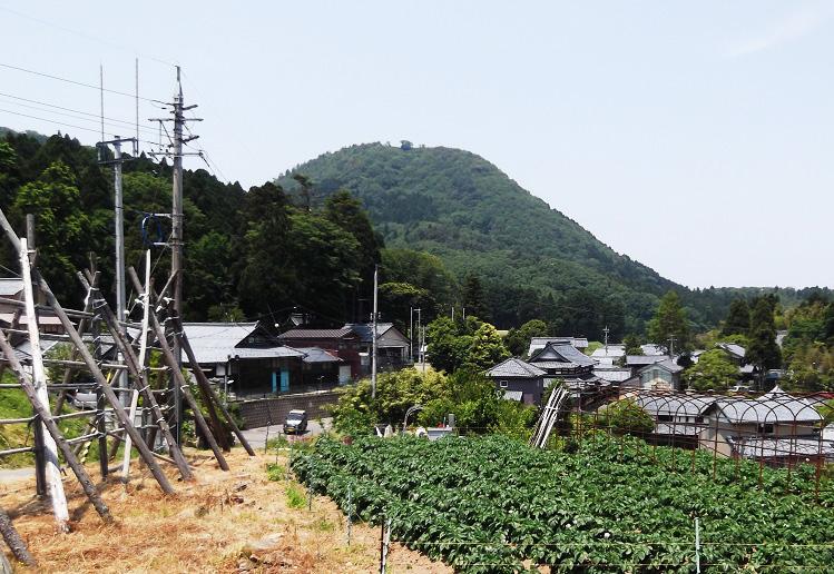 h28shokuiku_takasu_1.jpg
