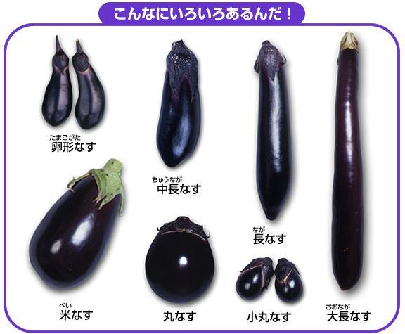 Japanese Eggplant Motif