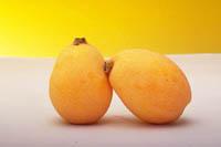 ふっくらとしてハリがあり、オレンジ色の濃いものを選びましょう。