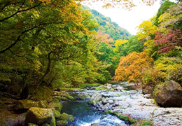 写真_熊本県:阿蘇地域
