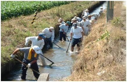 地域での排水路掃除