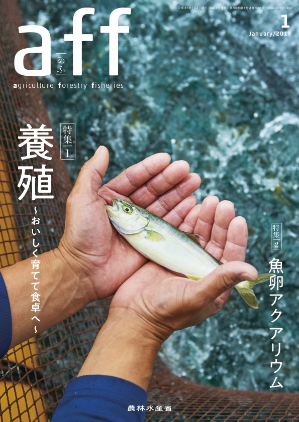 aff(あふ)1月号表紙