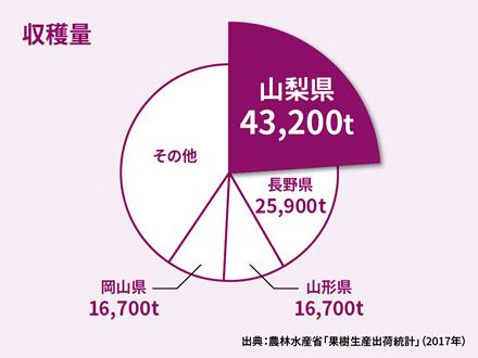 ぶどう の 収穫 量 ランキング ぶどうの生産量の都道府県ランキング(平成29年)