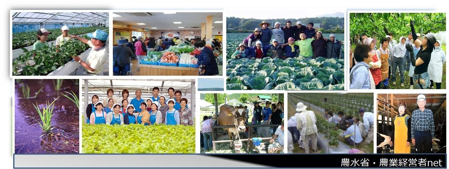 カバー画像facebook農業経営者net
