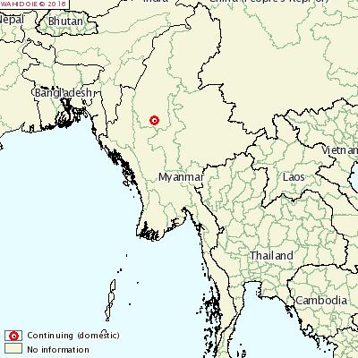 ミャンマー発生地図