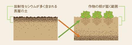 農地・牧草地の除染