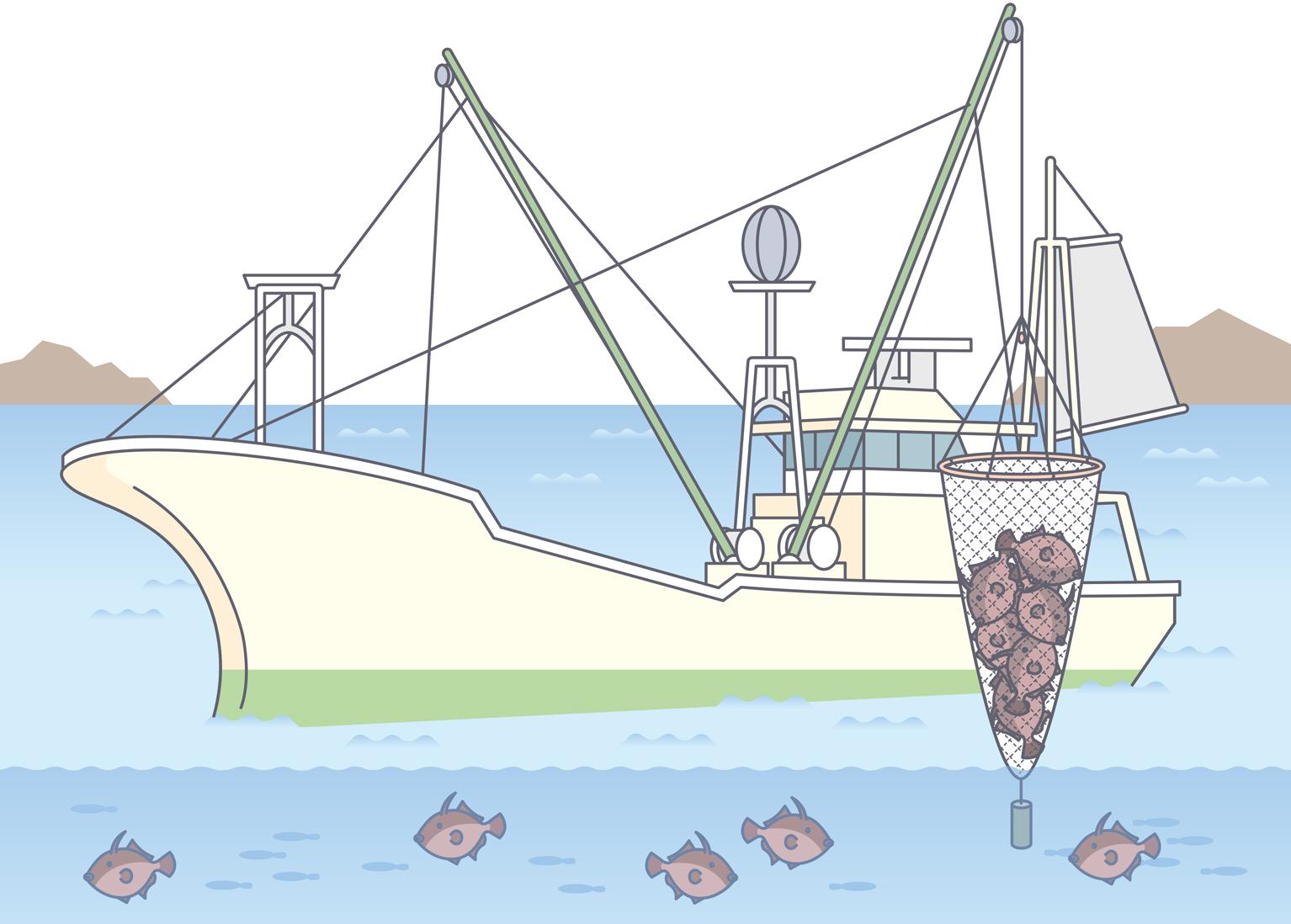 漁業種類イラスト集:農林水産省
