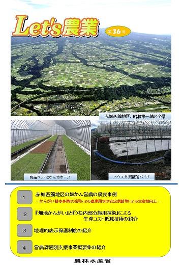Let's_農業36号