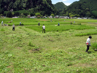 農地等活用ボランティア活動支援システム