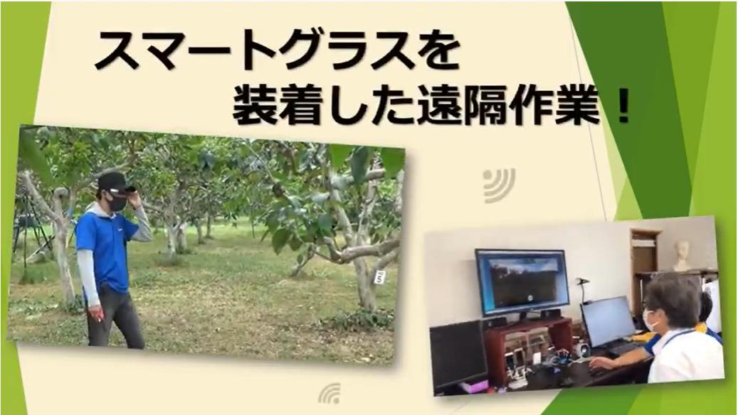 スマートグラスと遠隔システムの運用(滋賀県拠点)