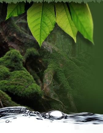 君が手に触れる水は過ぎし水の最後のものにして、来るべき水の最初のものである。レオナルド・ダ・ヴィンチ3