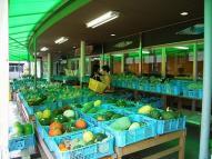 店頭には新鮮な野菜が並んでます