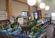 店内には新鮮な野菜がいっぱい