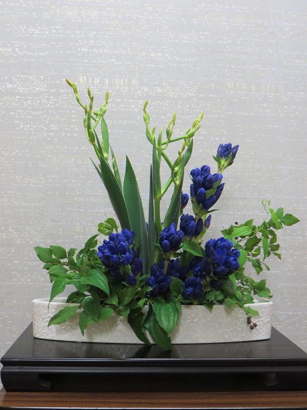今週の花「祇園祭」