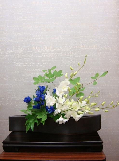 今週の花「青空」