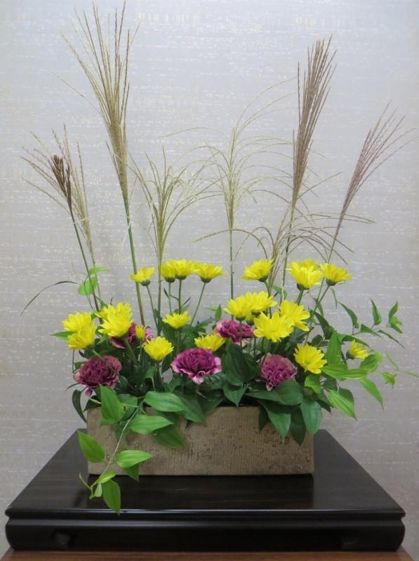 今週の花「秋晴れ」