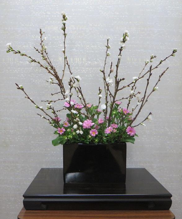 今週の花「初霜」